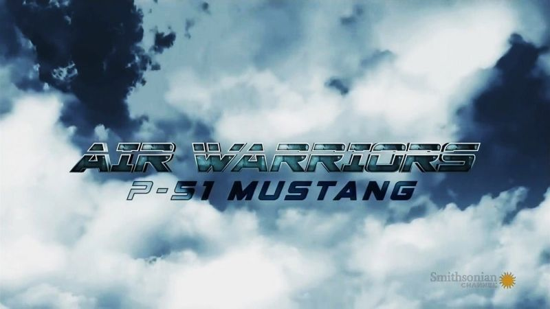 Image: Air-Warriors-Series-4-P-51-Mustang-Cover.jpg