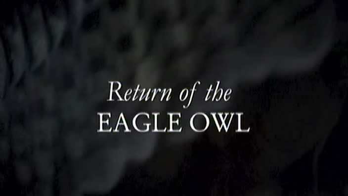 Image: Return-of-the-Eagle-Owl-Cover.jpg