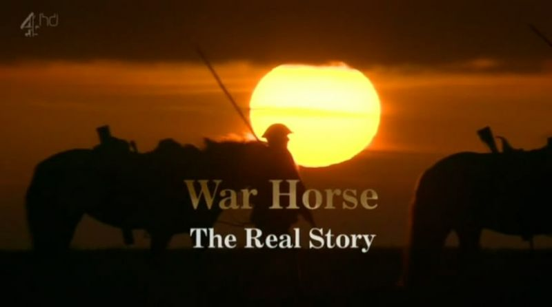Image: War-Horse-The-Real-Story-Cover.jpg