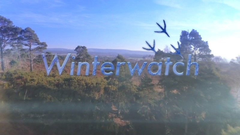 Image: Winterwatch-2017-Cover.jpg