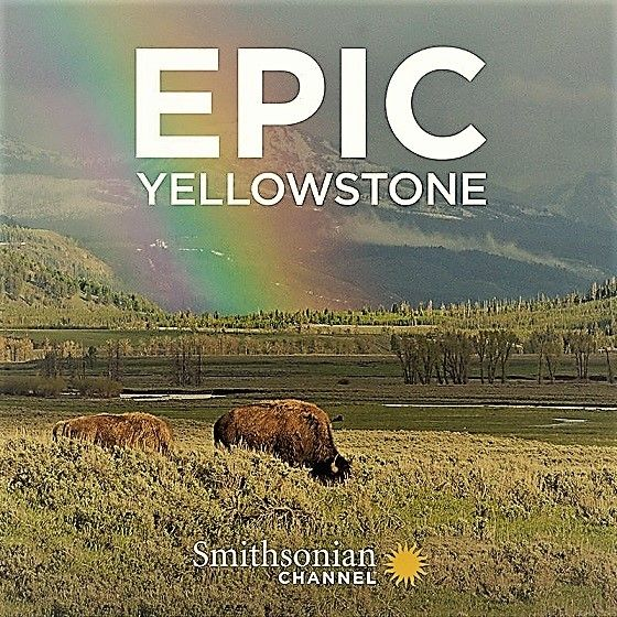 Image: Epic-Yellowstone-Series-1-Cover.jpg