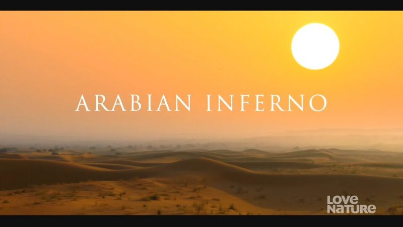 Image: Arabian-Inferno-Cover.jpg