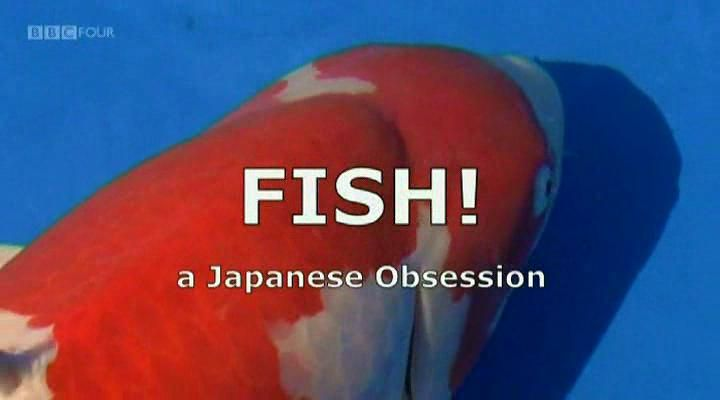 Image: Fish-A-Japanese-Obsession-Cover.jpg