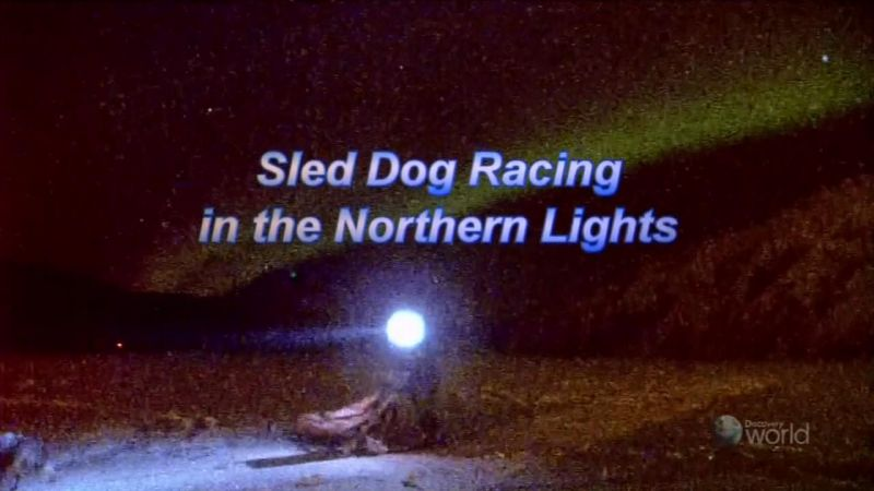 Image: Sled-Dog-Racing-in-the-Northern-Lights-Cover.jpg