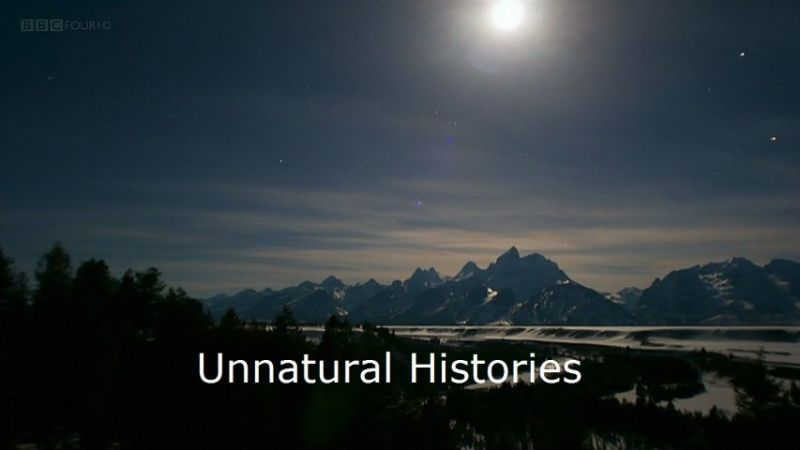 Image: Unnatural-Histories-BBC-Cover.jpg