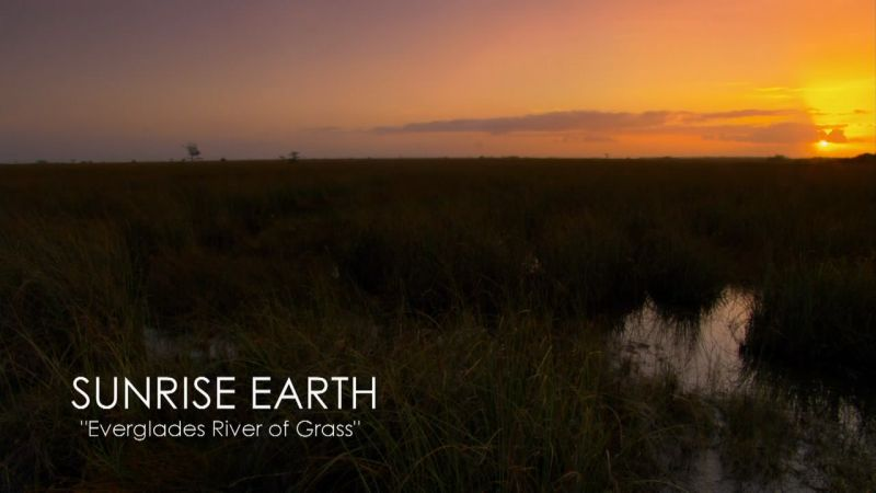 Image: Everglades-River-of-Grass-Cover.jpg