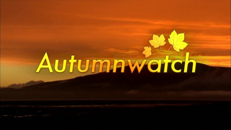 Image: Autumnwatch-2015-Cover.jpg