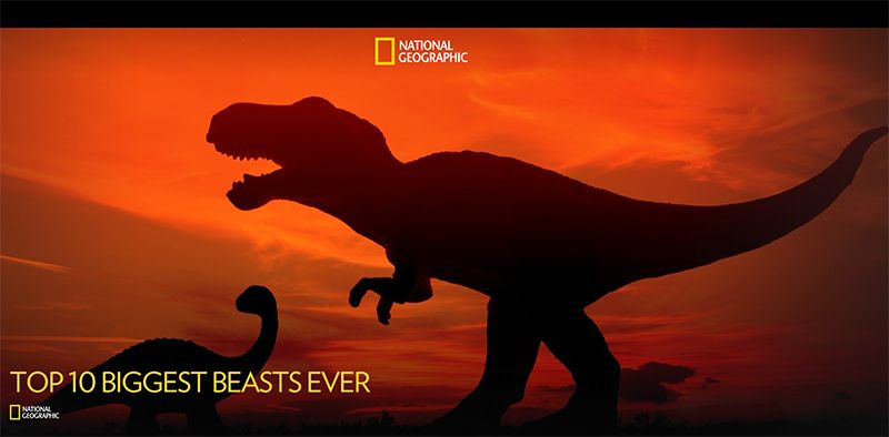 Image: Top-10-Biggest-Beasts-Ever-hd-Cover.jpg