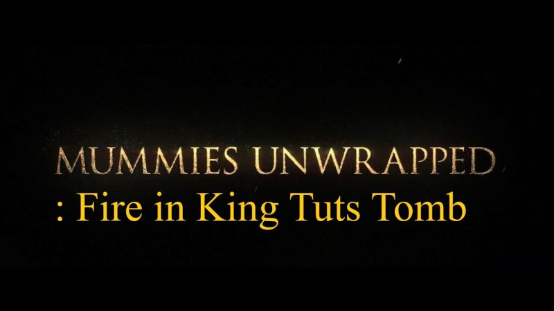 Image: Mummies-Unwrapped-Fire-in-King-Tuts-Tomb-Cover.jpg