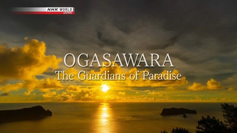 Image: Ogasawara-The-Guardians-of-Paradise-Cover.jpg