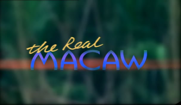Image: Real-Macaw-Cover.jpg