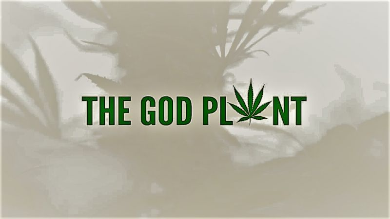 Image: The-God-Plant-Cover.jpg