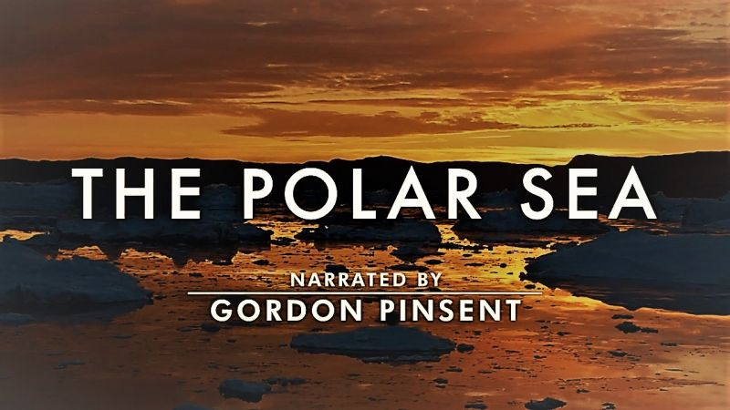 Image: The-Polar-Sea-Series-1-Cover.jpg