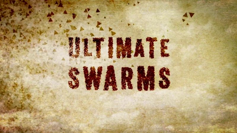 Image: Ultimate-Swarms-Cover.jpg
