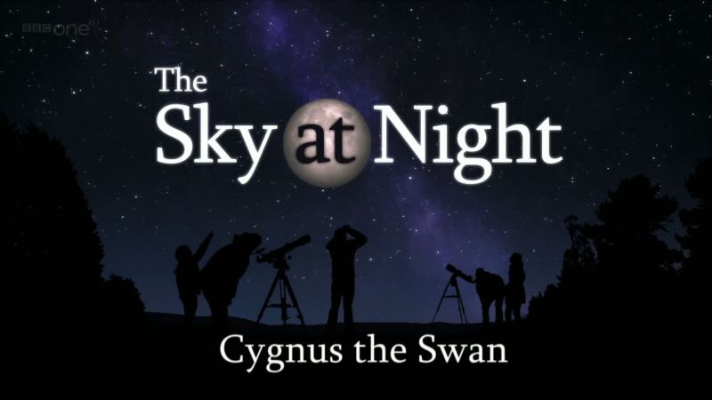 Image: Cygnus-the-Swan-Cover.jpg