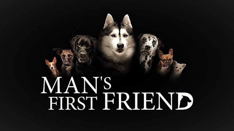 Image: Mans-First-Friend-Cover.jpg