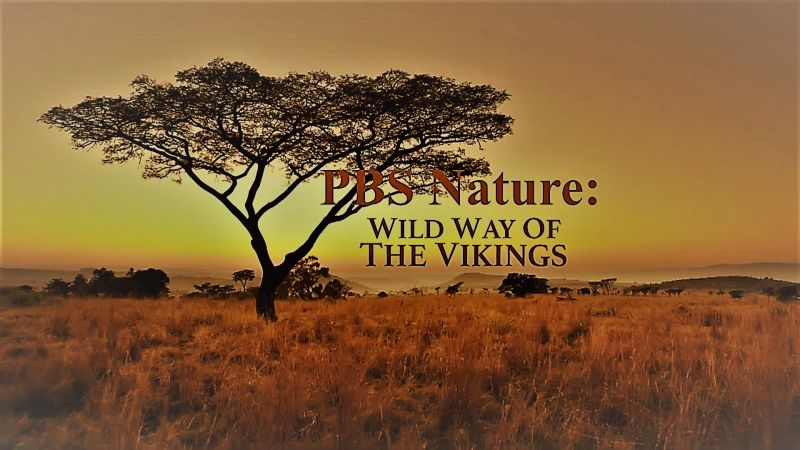 Image: Nature-Wild-Way-of-the-Vikings-Cover.jpg