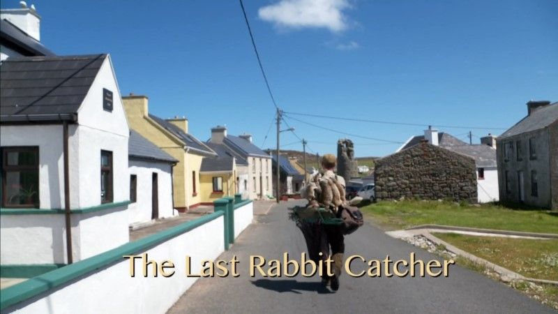 Image: The-Last-Rabbit-Catcher-Cover.jpg