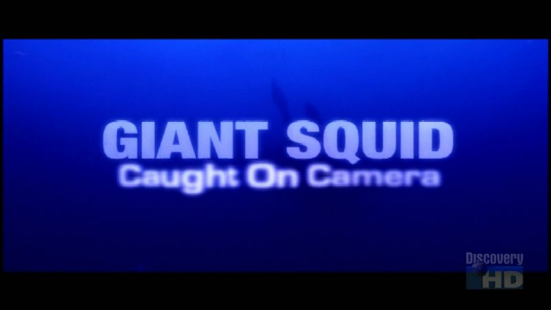 Image: Giant-Squid-Caught-on-Camera-720p-Cover.jpg