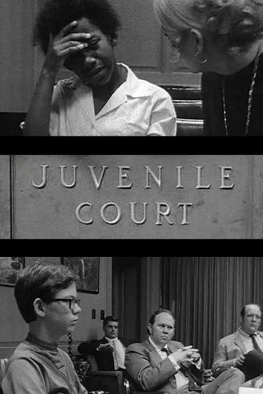 Image: Juvenile-Court-Cover.jpg