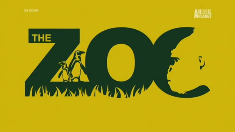 Image: The-Zoo-Series-4-Discovery-Cover.jpg