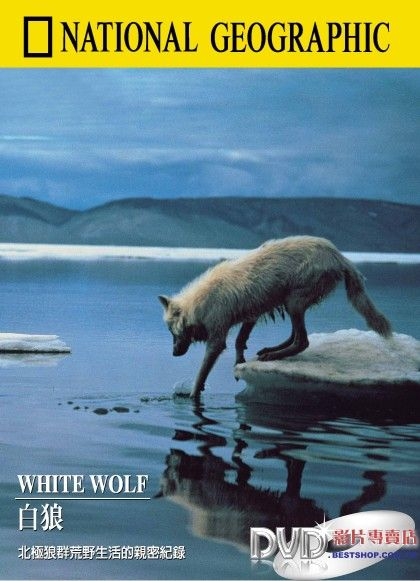 Image:White-Wolf-Cover.jpg