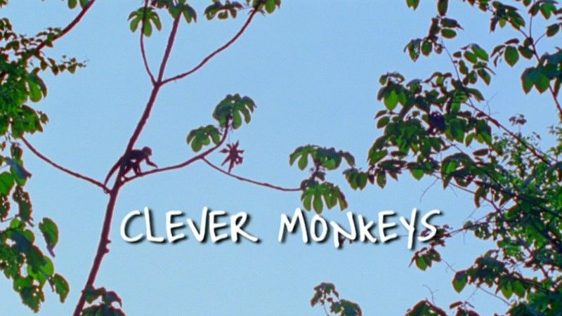 Image: Clever-Monkeys-BBC-Cover.jpg