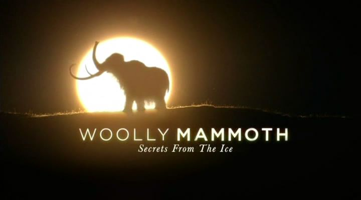 Image: Woolly-Mammoth-Secrets-from-the-Ice-Cover.jpg