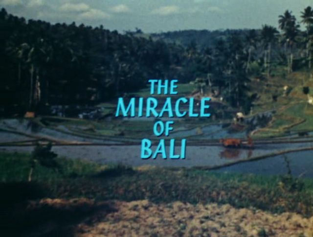 Image: The-Miracle-of-Bali-Cover.jpg