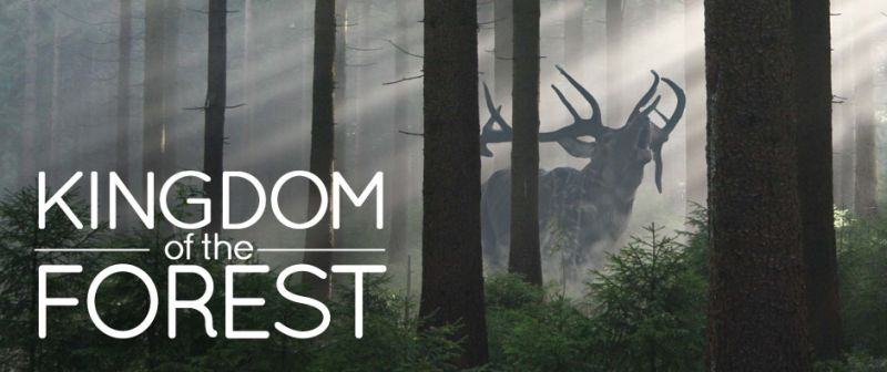 Image: Kingdom-of-the-Forest-Cover.jpg
