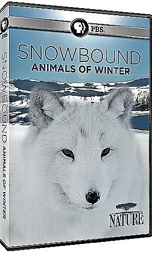 Image: Snowbound-Animals-of-Winter-Cover.jpg