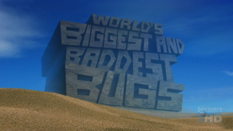 Image: World-s-Biggest-and-Baddest-Bugs-720p-Cover.jpg