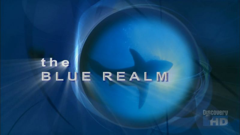 Image: The-Blue-Realm-Cover.jpg