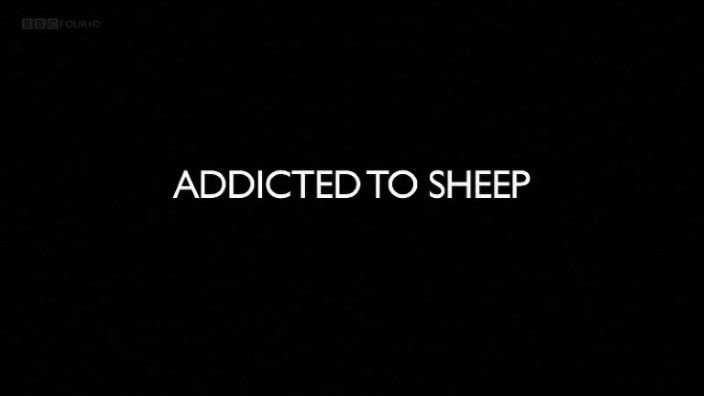 Image: Addicted-to-Sheep-Cover.jpg