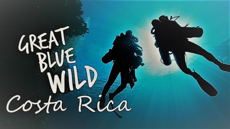 Image: Great-Blue-Wild-Series-1-Part-14-Costa-Rica-Cover.jpg