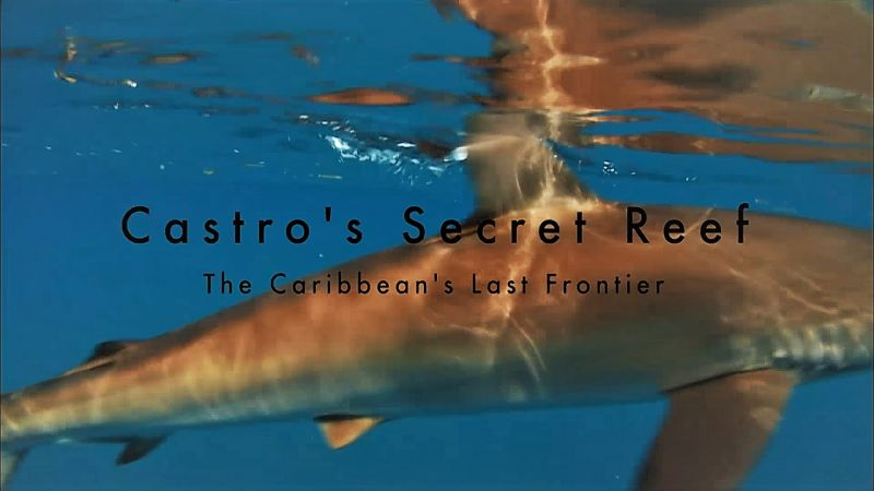 Image: Castro-s-Secret-Reef-Cover.jpg