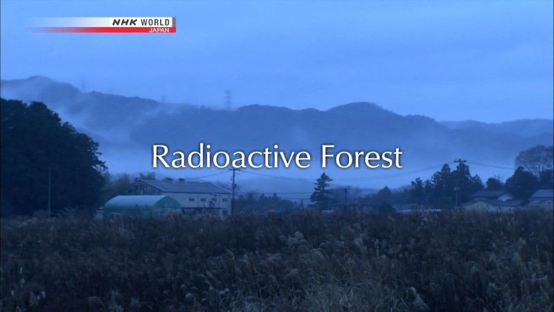 Image: Radioactive-Forest-Cover.jpg