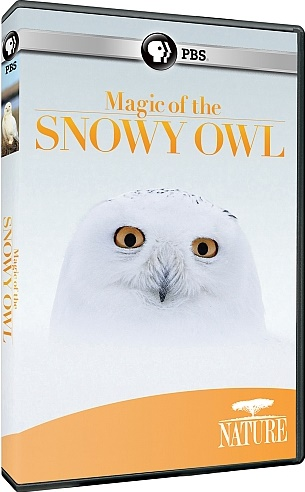 Image: Magic-of-the-Snowy-Owl-Cover.jpg