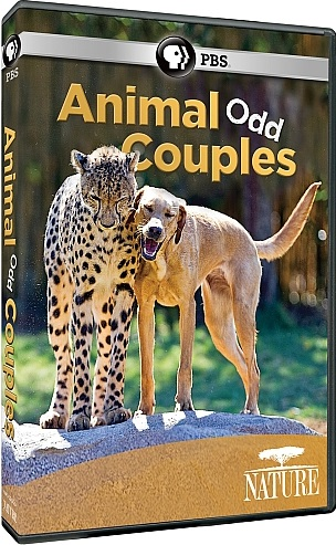 Image: Animal-Odd-Couples-Cover.jpg