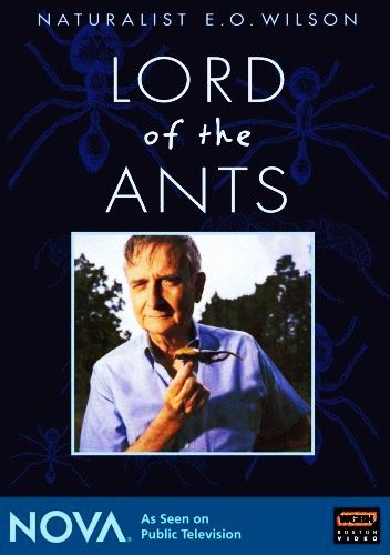 Image: Lord-of-the-Ants-Cover.jpg