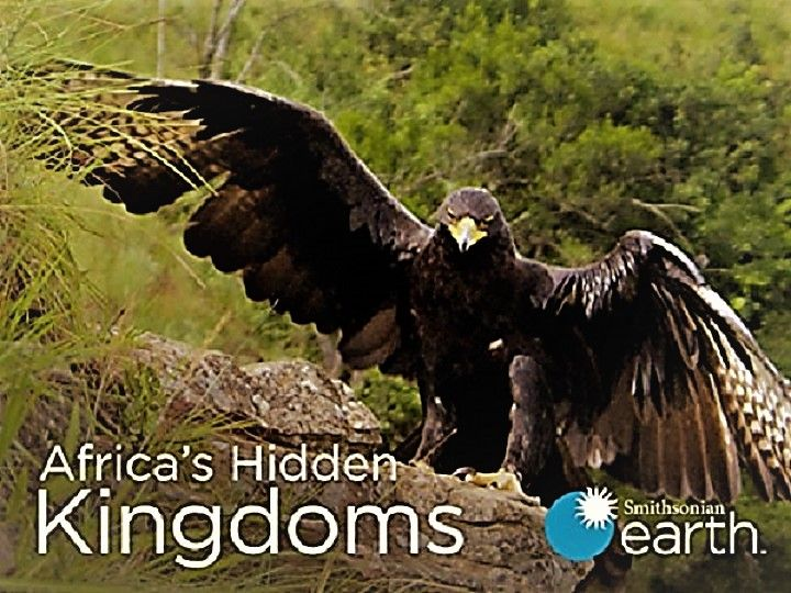 Image: Africas-Hidden-Kingdoms-Series-1-Cover.jpg