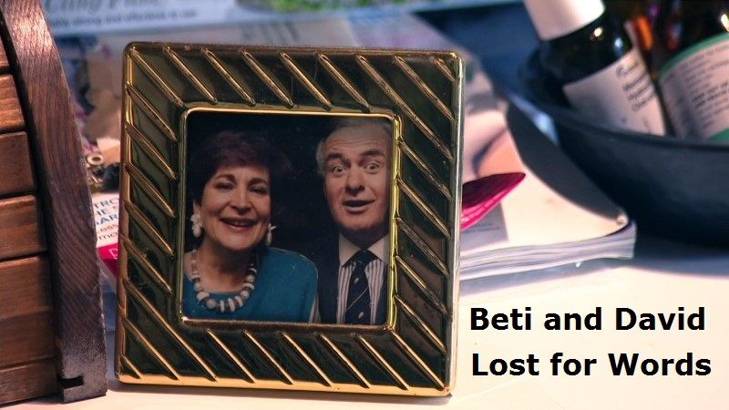 Image: Beti-and-David-Lost-for-Words-Cover.jpg
