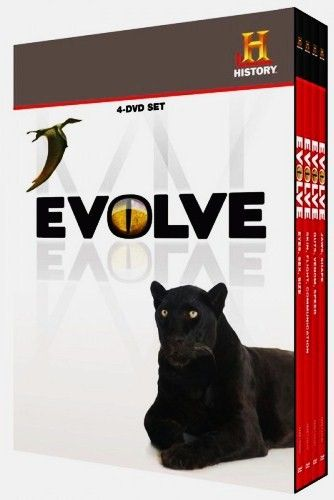 Image: Evolve-Cover.jpg
