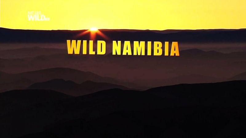 Image: Wild-Namibia-Cover.jpg