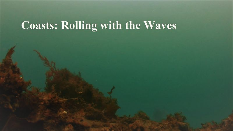Image: Coasts-Rolling-with-the-Waves-Cover.jpg