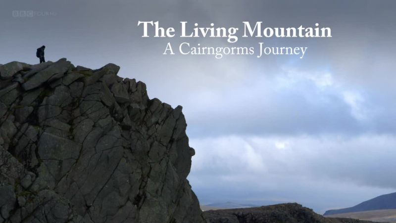 Image: The-Living-Mountain-A-Cairngorms-Journey-Cover.jpg