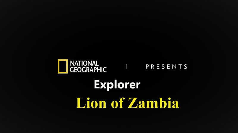 Image: Lion-of-Zambia-Cover.jpg