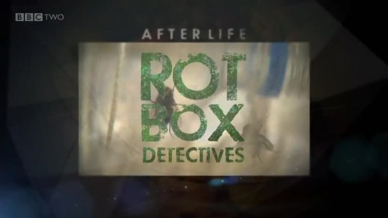 Image: After-Life-Rot-Box-Detectives-Cover.jpg