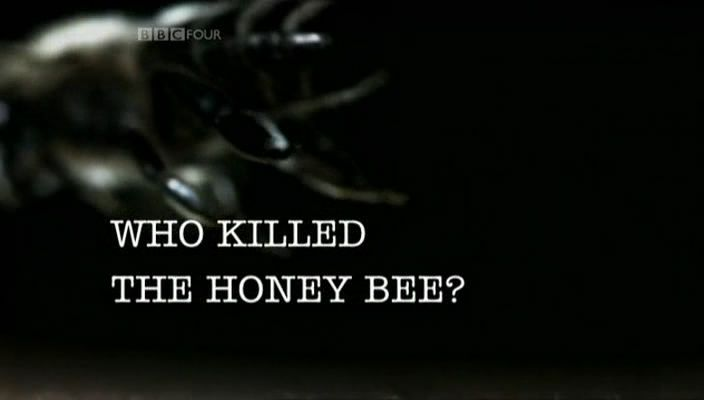 Image: Who-Killed-the-Honey-Bee-Cover.jpg