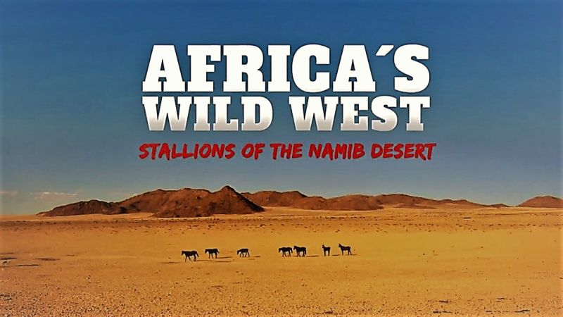 Image: Africas-Wild-West-Stallions-of-the-Namib-Desert-Cover.jpg